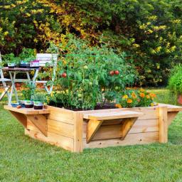 A Raised Bed Tragedy?